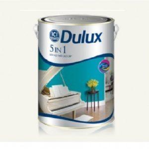 Dulux 5 In 1