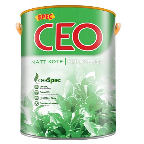 Spec CEO Matt Kote For Interior