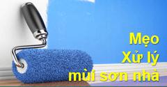 1001 Mẹo xử lý mùi sơn nhà hiệu quả nhất bạn nên thử 1️⃣ VN