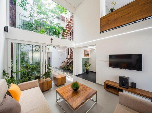 Trồng cây xanh trong nhà tránh nóng