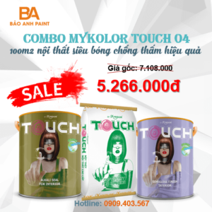 Combo Mykolor Touch 04