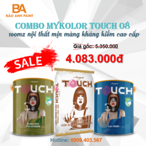 Combo Mykolor Touch 08