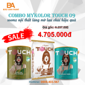 Combo Mykolor Touch 09