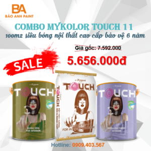 Combo Mykolor Touch 11