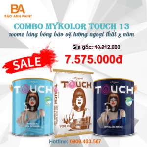 Combo Mykolor Touch 13