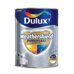 dulux-powerflex-bong
